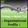 Strategic Planning Tool - Organizational Profile 100x100