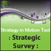 Strategic Survey - Strategic Planning Tool